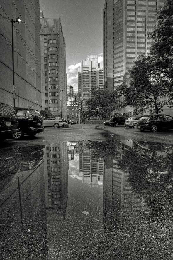 20120123-puddle-dancronin.jpg