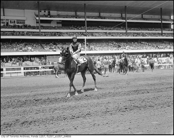 2012412-woodbine-jockey-1950s-maybe.jpg