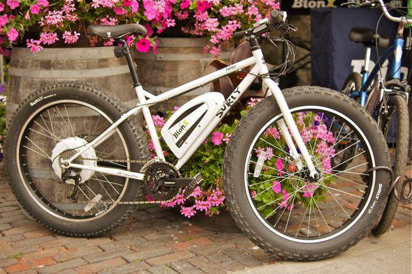 20120619_EcoWheels04.jpg
