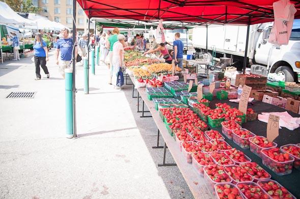 etobicoke civic centre farmers market toronto