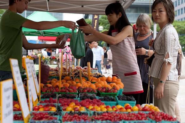 david pecaut square farmers market toronto