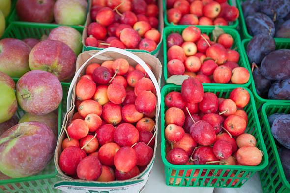 toronto annex farmers market