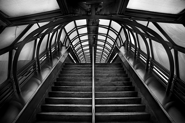 Toronto black and white