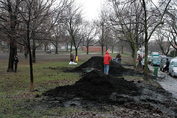 toronto compost pile