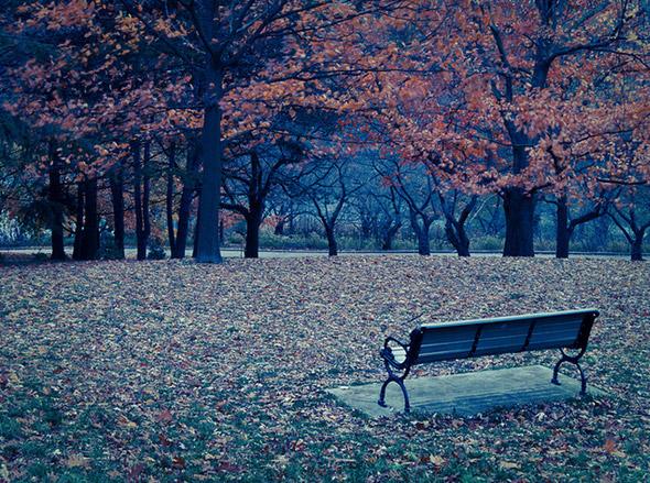 2012119-fall-426.jpg
