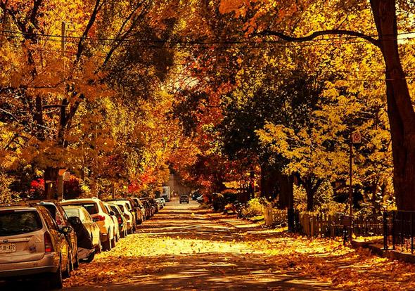 2012119-fall17.jpg