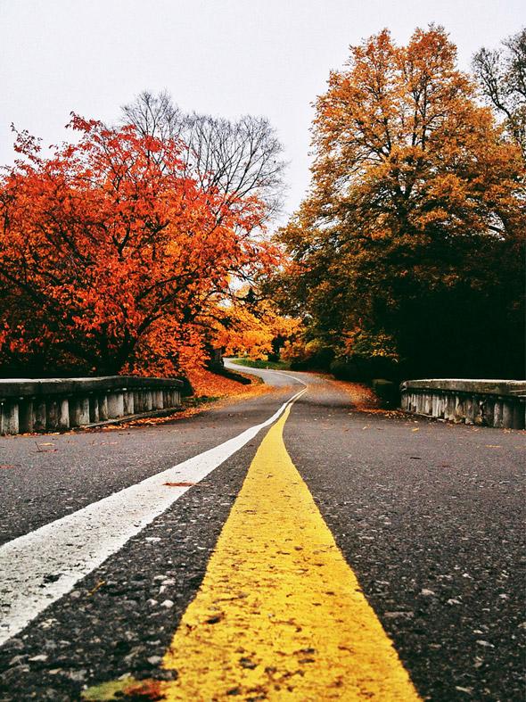 2012119-fall9.jpg