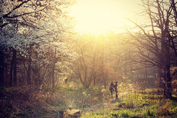 High Park Spring