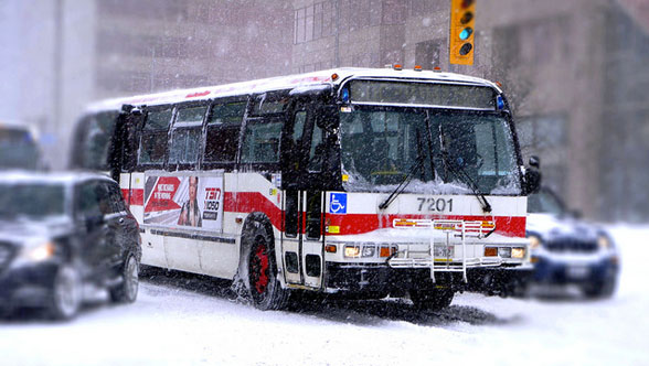 ttc bus snow