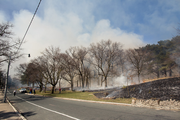 High Park Burn