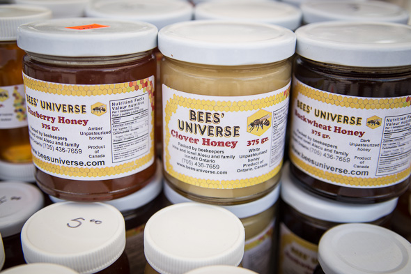 Bees Universe