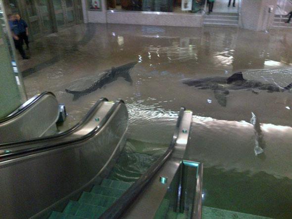 toronto union station flood