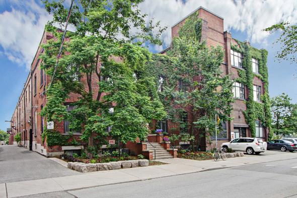 347 Sorauren Avenue Toronto
