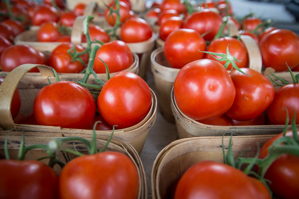 Fairmount Park Farmers Market