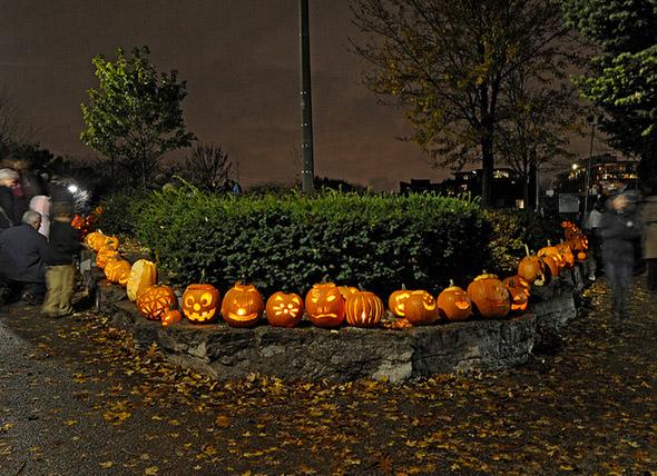 Fall Events Toronto 2013