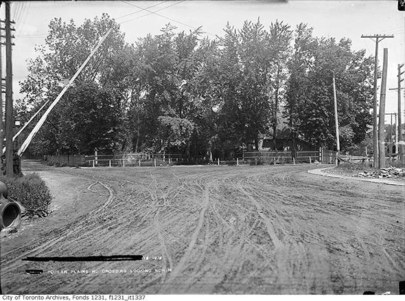 2013913-dav-poplar-plains-1912.jpg