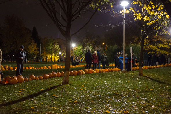 2013113-pumpkin-wide2.jpg