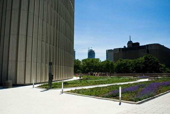 toronto green roof