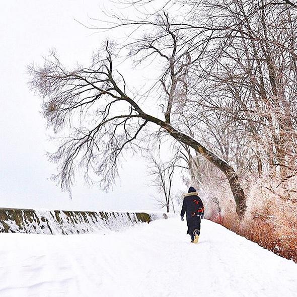 cold weather toronto