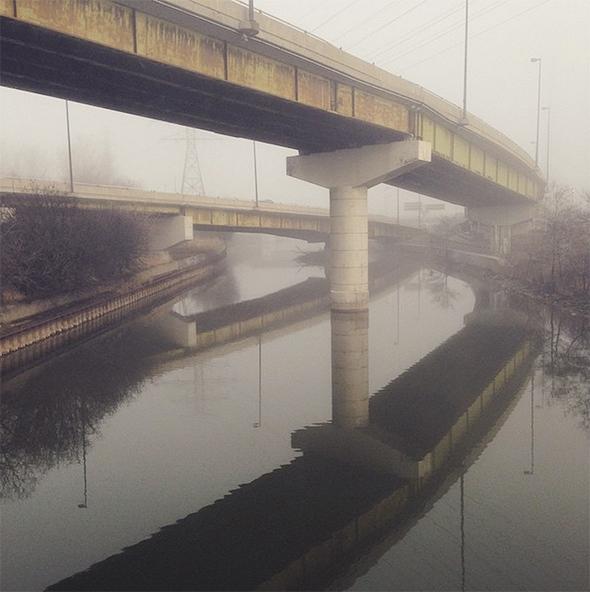fog toronto