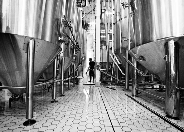 toronto amsterdam brewery
