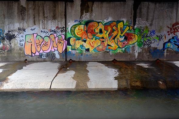 black creek toronto