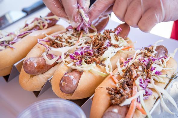Food Trends Toronto